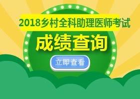 2018乡村全科助理医师考试成绩查询