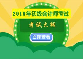 2019年初级会计职称考试大纲