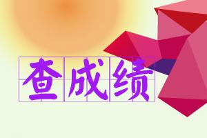 山西执业药师信息管理平台图片