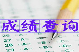 2017执业药师成绩查询入口图片
