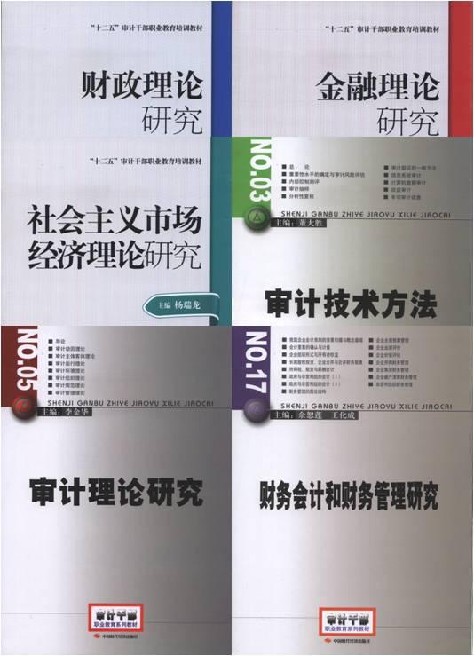 2017年高级审计师考试教材  全套共6本(沿用2005 2010 2012年版)