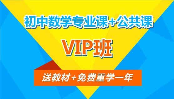 【VIP班】初中数学专业课+公共课(全科)
