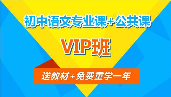 【VIP班】初中语文专业课+公共课(全科)