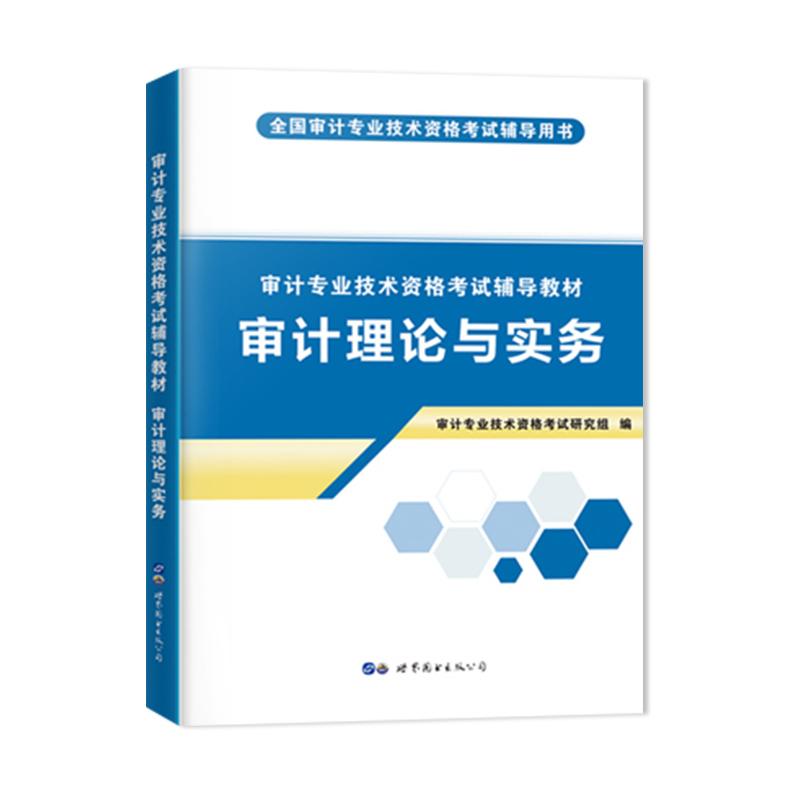 天明2020审计专业技术资格考试教材 审计理论与实务(不单售)