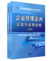 企业管理咨询实务与案例分析(上下册)-2015年全国管理咨询师职业水平考试用书(全套共2本)(教材沿用2014年版)