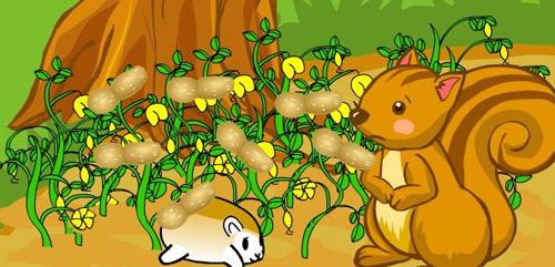 幼儿教育:小松鼠的花生找到了-中大网校儿童教育网