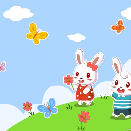 搜集可爱小白兔壁纸