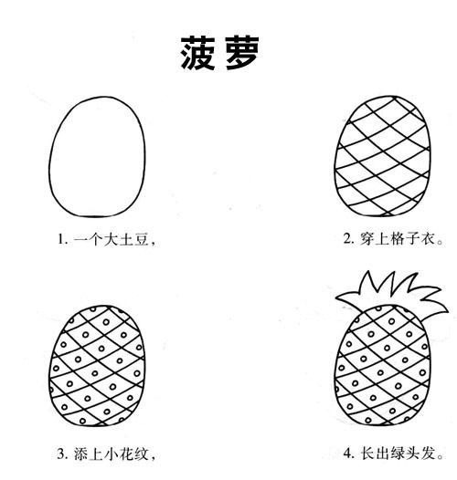 线描《画菠萝步骤》