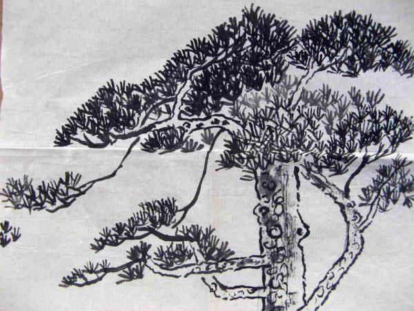 中国风儿童画《松树》