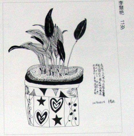 线描《盆栽花卉》
