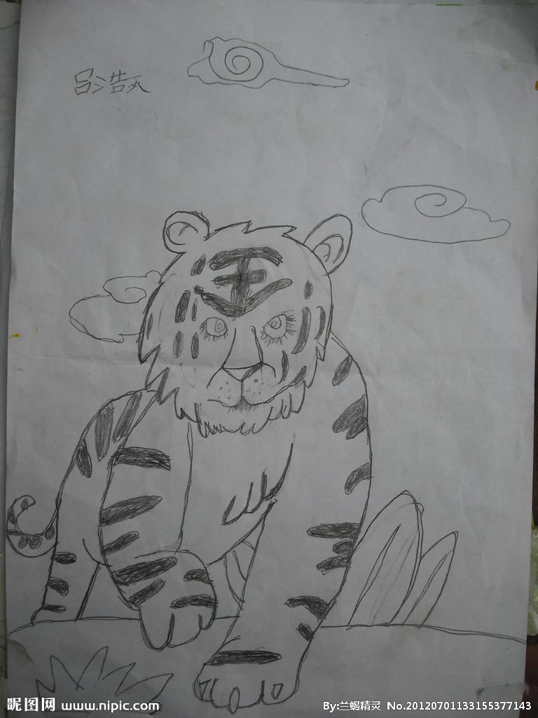 铅笔画手绘老虎