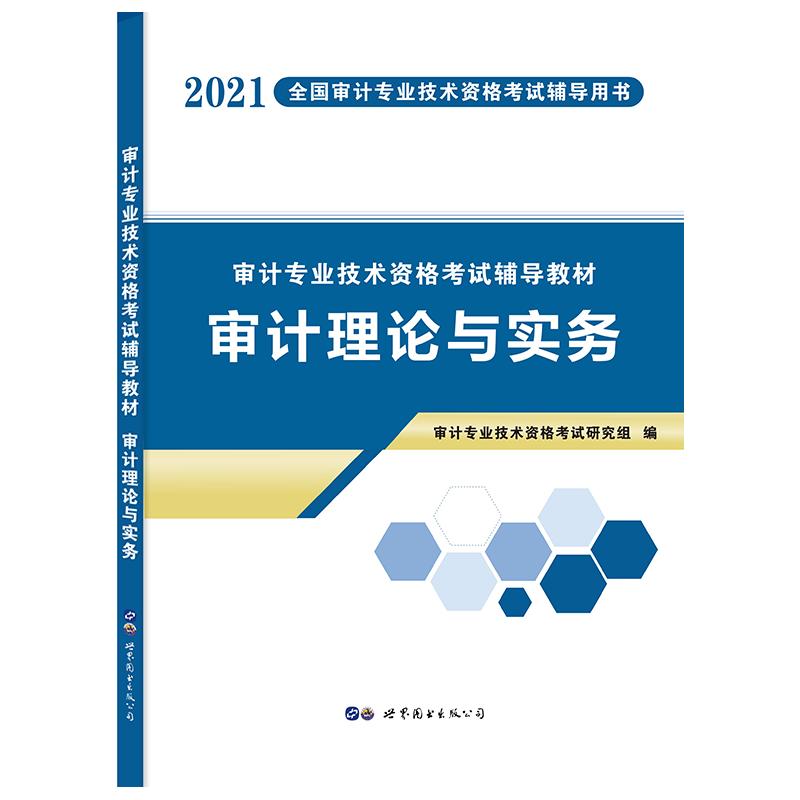 2021年天明审计专业技术资格考试教材 审计理论与实务(不单售)