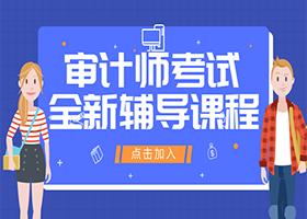 2019审计师考试VIP套餐火热进行中